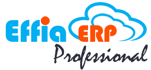 Cloud-ERP-Professional