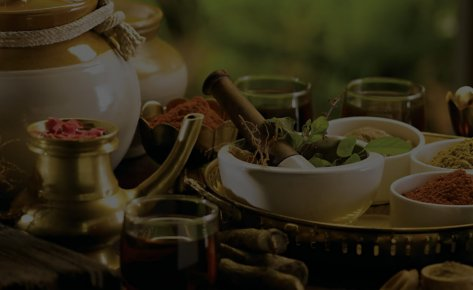 Ayurvedic Software